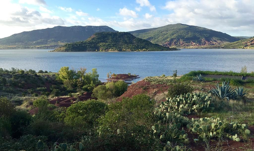 Les cactées, la ruffe et la rare végétation autour du lac.