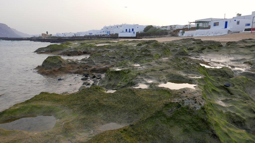 Le port à marée basse.