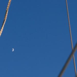 Lune diurne