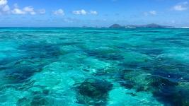 Grenadines_17
