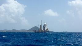 Grenadines_20