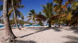 Grenadines_26